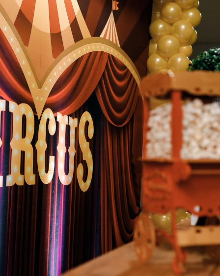 circusfeestje organiseren